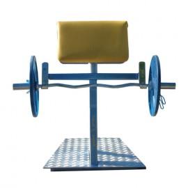 Banca biceps din picioare